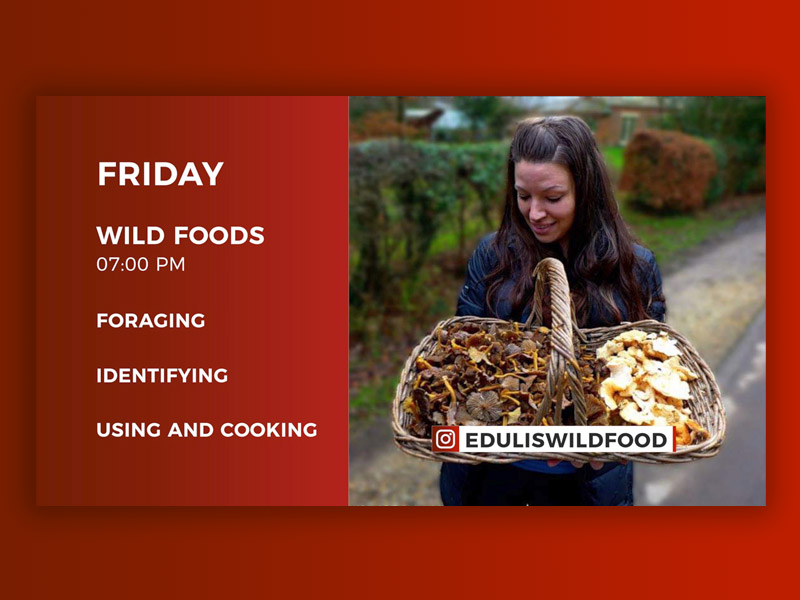 Live Stream Wild Foods with Lisa Cutcliffe – 17th April